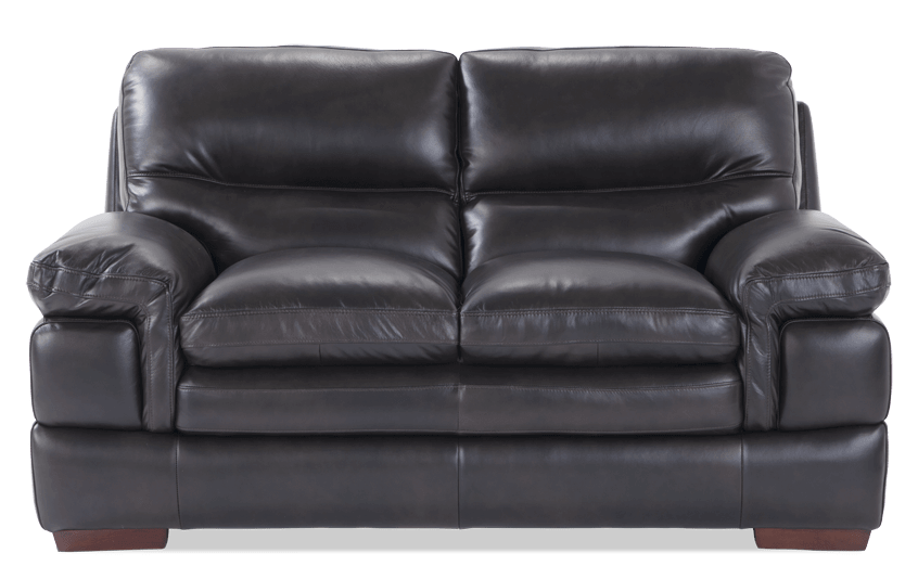 Carter Leather Loveseat