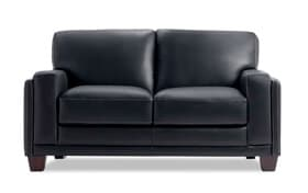 Cole Leather Loveseat