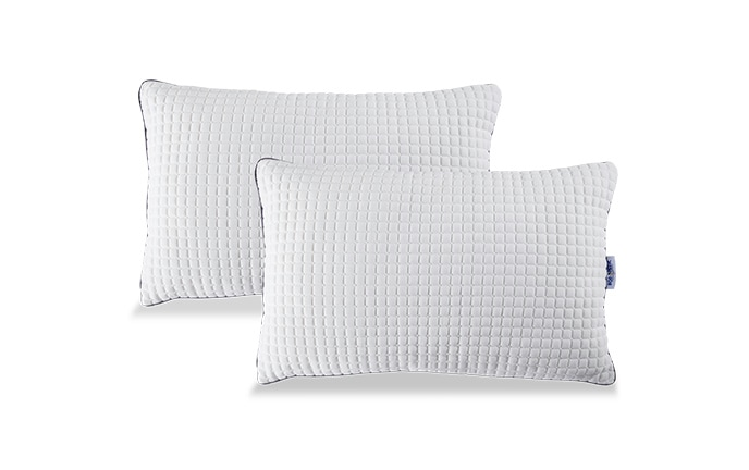 Set of 2 Bob-O-Pedic Classic Pillows