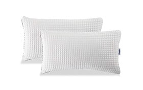 Set of 2 Bob-O-Pedic King Classic Pillows