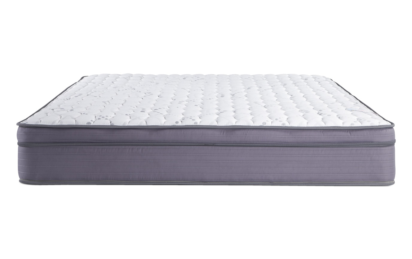 Splendor Twin Mattress Bobs Com