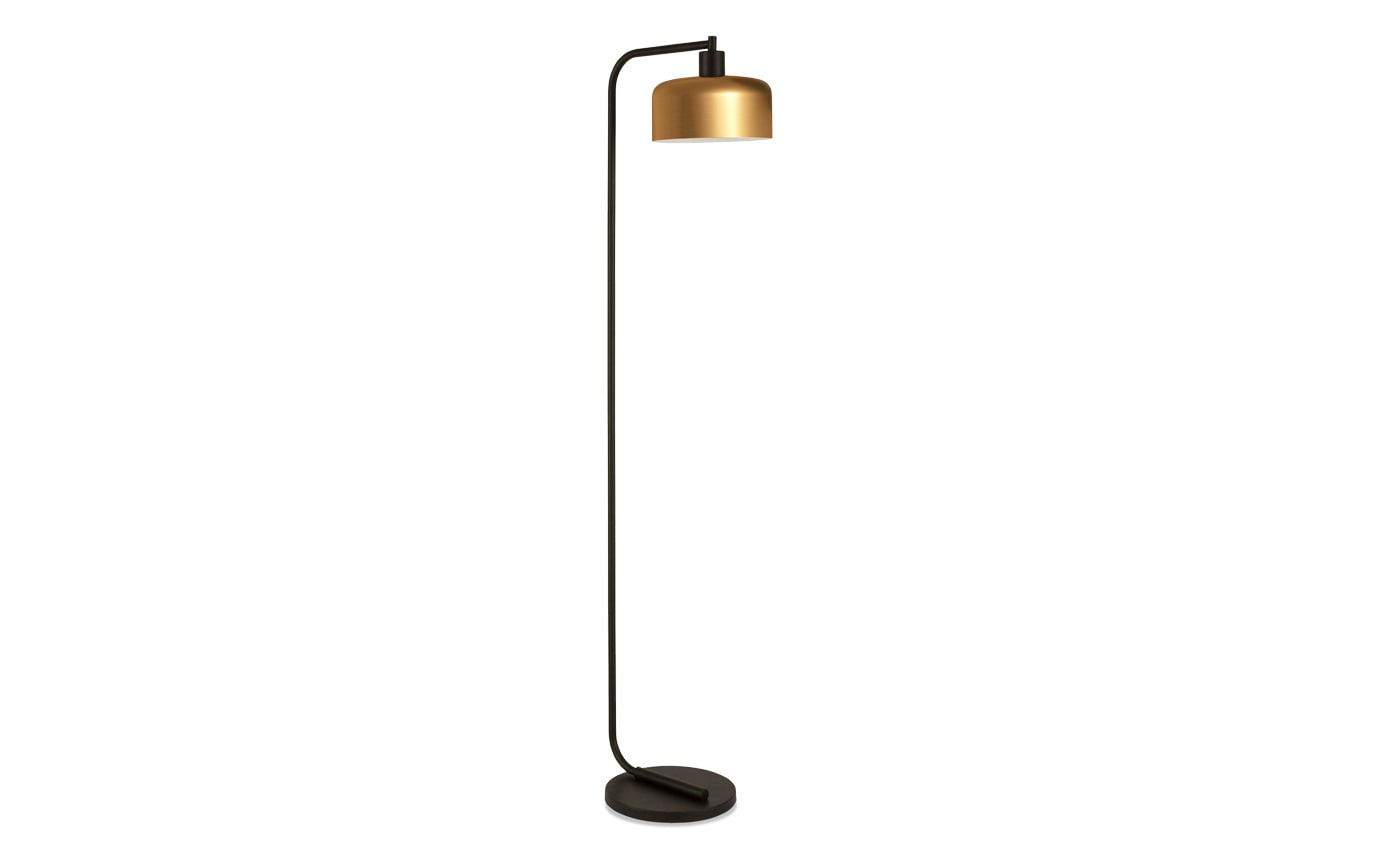 Charlotte Floor Lamp in Blackened Bronze and Brass