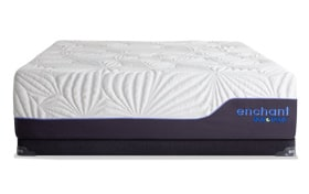 Bob-O-Pedic Enchant King Plush Low Profile Mattress Set