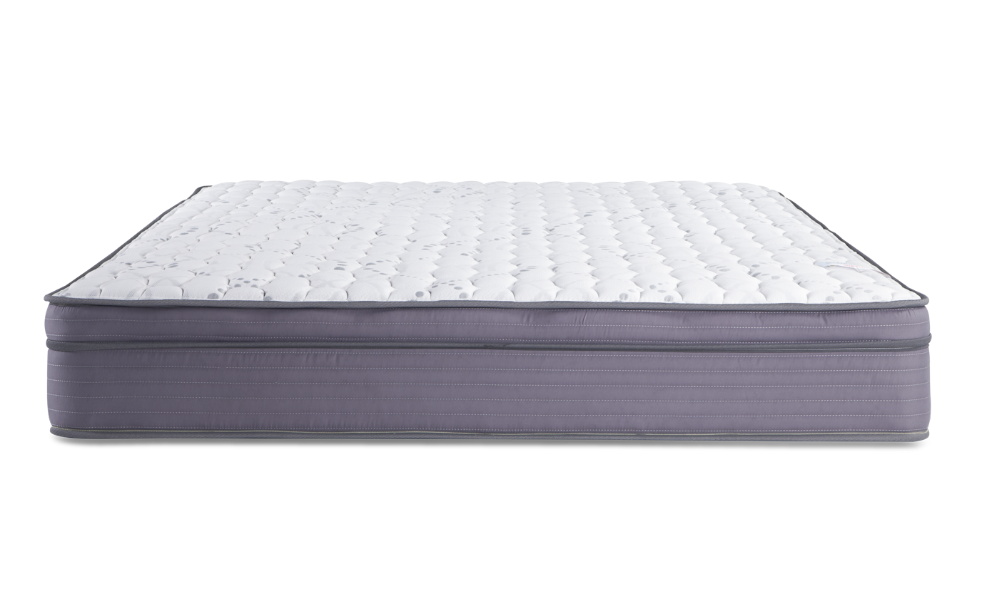 Splendor Twin Mattress